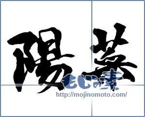 筆文字素材:陽菜-3 [16345]