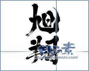 筆文字素材:旭 翔 [14002]